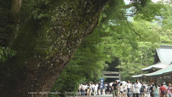 11-5-伊勢神宮-20100801_103625