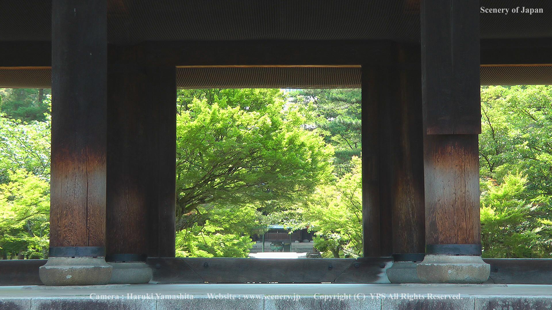 13-1-南禅寺-20110625_083003